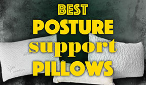 Best Posture Cushion for 2020 (Buyers Guide and Reviews)