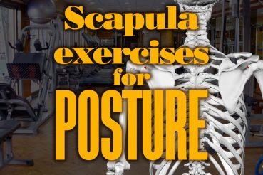 ScapulaExercisesForPosture